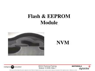 Flash & EEPROM Module