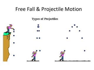 Free Fall & Projectile Motion