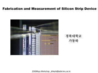 Fabrication and Measurement of Silicon Strip Device