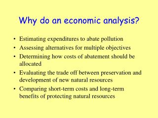 Why do an economic analysis?