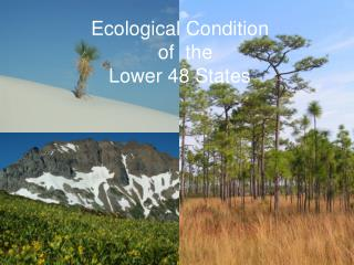 Ecological Condition of the Lower 48 States