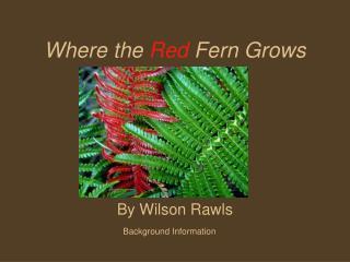 when was wilson rawls born