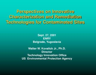 Perspectives on Innovative Characterization and Remediation Technologies for Contaminated Sites
