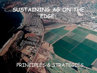 SUSTAINING AG ON THE EDGE: