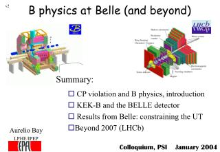 B physics at Belle (and beyond)