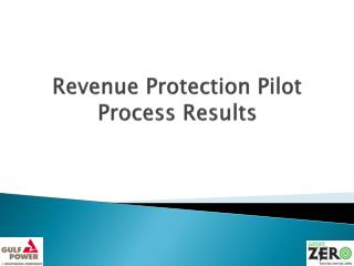 Revenue Protection Pilot Process Results