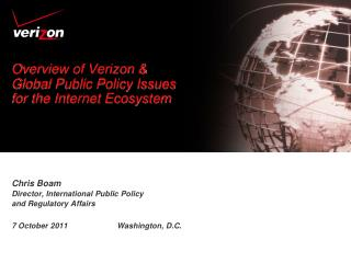 Overview of Verizon & Global Public Policy Issues for the Internet Ecosystem