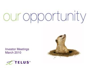 Investor Meetings March 2010