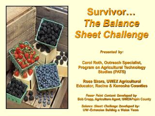 Survivor… The Balance Sheet Challenge