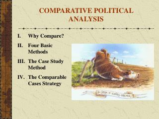 Why Compare Four Basic Methods The Case Study Method The Comparable Cases Strategy