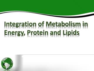 Integration of Metabolism in Energy, Protein and Lipids