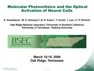 Molecular Photovoltaics and the Optical Activation of Neural Cells