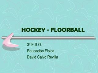 HOCKEY - FLOORBALL