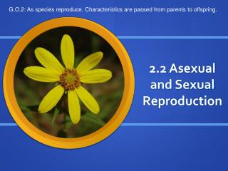 2.2 Asexual and Sexual Reproduction