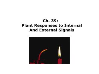Ch. 39:   Plant Responses to Internal And External Signals