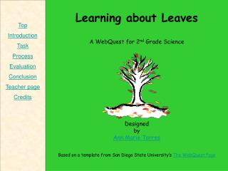 Learning about Leaves A WebQuest for 2 nd  Grade Science Designed by Ann Marie Torres Based on a template from San Diego