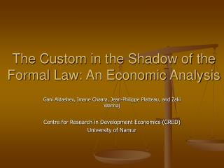 The Custom in the Shadow of the Formal Law: An Economic Analysis