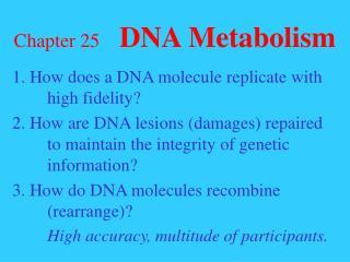 Chapter 25 DNA Metabolism