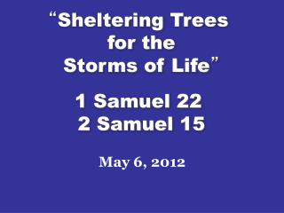 """ Sheltering Trees  for the Storms of Life "" 1 Samuel 22  2 Samuel 15"