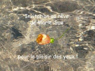 Invitation au rêve de Marie-Sue