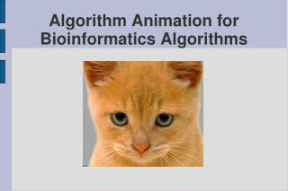 Algorithm Animation for Bioinformatics Algorithms