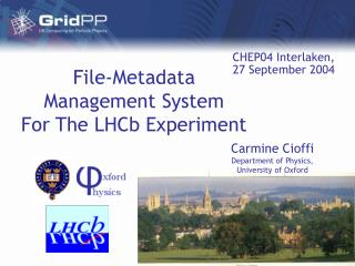 File-Metadata  Management System  For The LHCb Experiment
