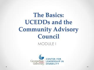 The Basics:  UCEDDs and the Community Advisory Council
