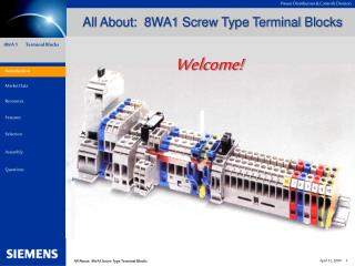 All About:  8WA1 Screw Type Terminal Blocks