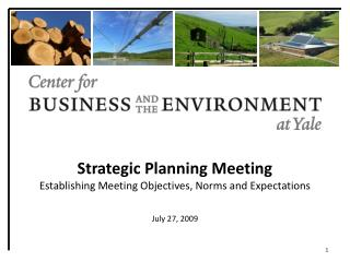 Strategic Planning Meeting Establishing Meeting Objectives, Norms and Expectations July 27, 2009