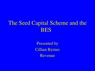 The Seed Capital Scheme and the BES