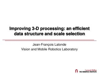 Improving 3-D processing: an efficient data structure and scale selection