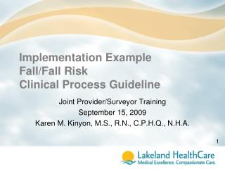 Implementation Example Fall/Fall Risk  Clinical Process Guideline