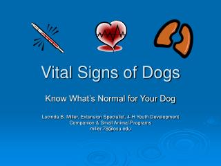 Vital Signs of Dogs