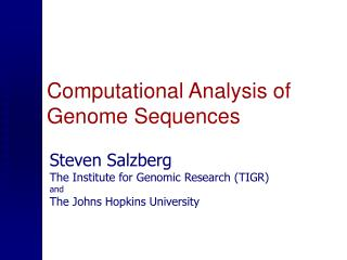 Computational Analysis of Genome Sequences