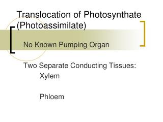 Translocation of Photosynthate (Photoassimilate)