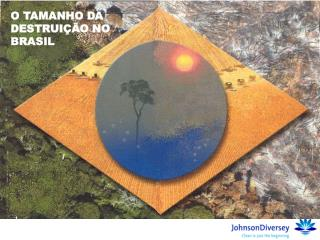 O TAMANHO DA DESTRUIÇÃO NO BRASIL