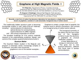 Graphene at High Magnetic Fields  I