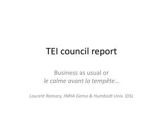 TEI council report