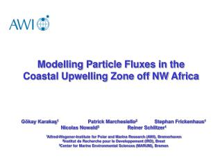 Modelling Particle Fluxes in the Coastal Upwelling Zone off NW Africa