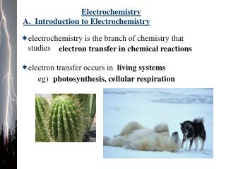 A.  Introduction to Electrochemistry
