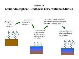 Precipitation  wets the surface...