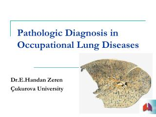 Pathologic Diagnosis in Occupational Lung Diseases
