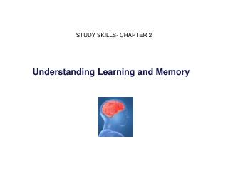 Understanding Learning and Memory