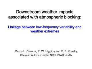 Marco L. Carrera, R. W. Higgins and V. E. Kousky Climate Prediction Center NCEP/NWS/NOAA
