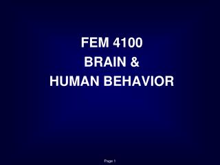FEM 4100 BRAIN &  HUMAN BEHAVIOR