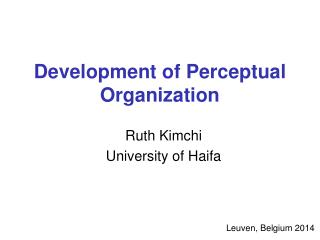 Development of Perceptual Organization