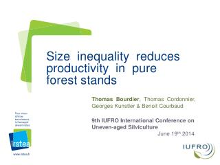 Size  inequality  reduces  productivity  in  pure  forest stands