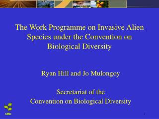 The Work Programme on Invasive Alien Species under the Convention on Biological Diversity