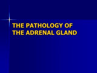 THE PATHOLOGY OF THE ADRENAL GLAND