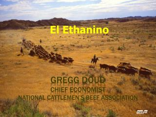 Gregg Doud Chief Economist National Cattlemen's Beef Association